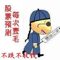 东升伟业股票_浪潮小散欢乐多(2)