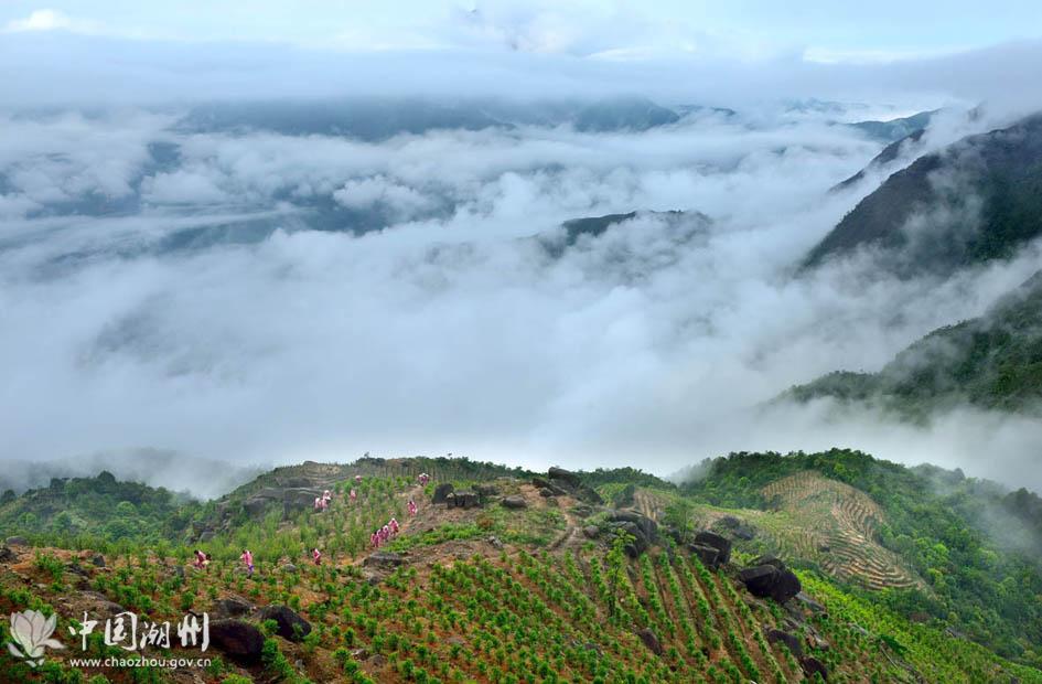 最美的-广东潮州凤凰山天池