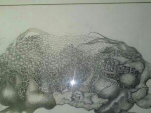 铅笔画向日葵 中央美术学院蒋铭松作品,全国一等奖 拿来祝阵连继拉