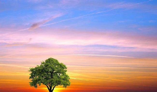 背景 壁纸 风景 天空 桌面 650_460