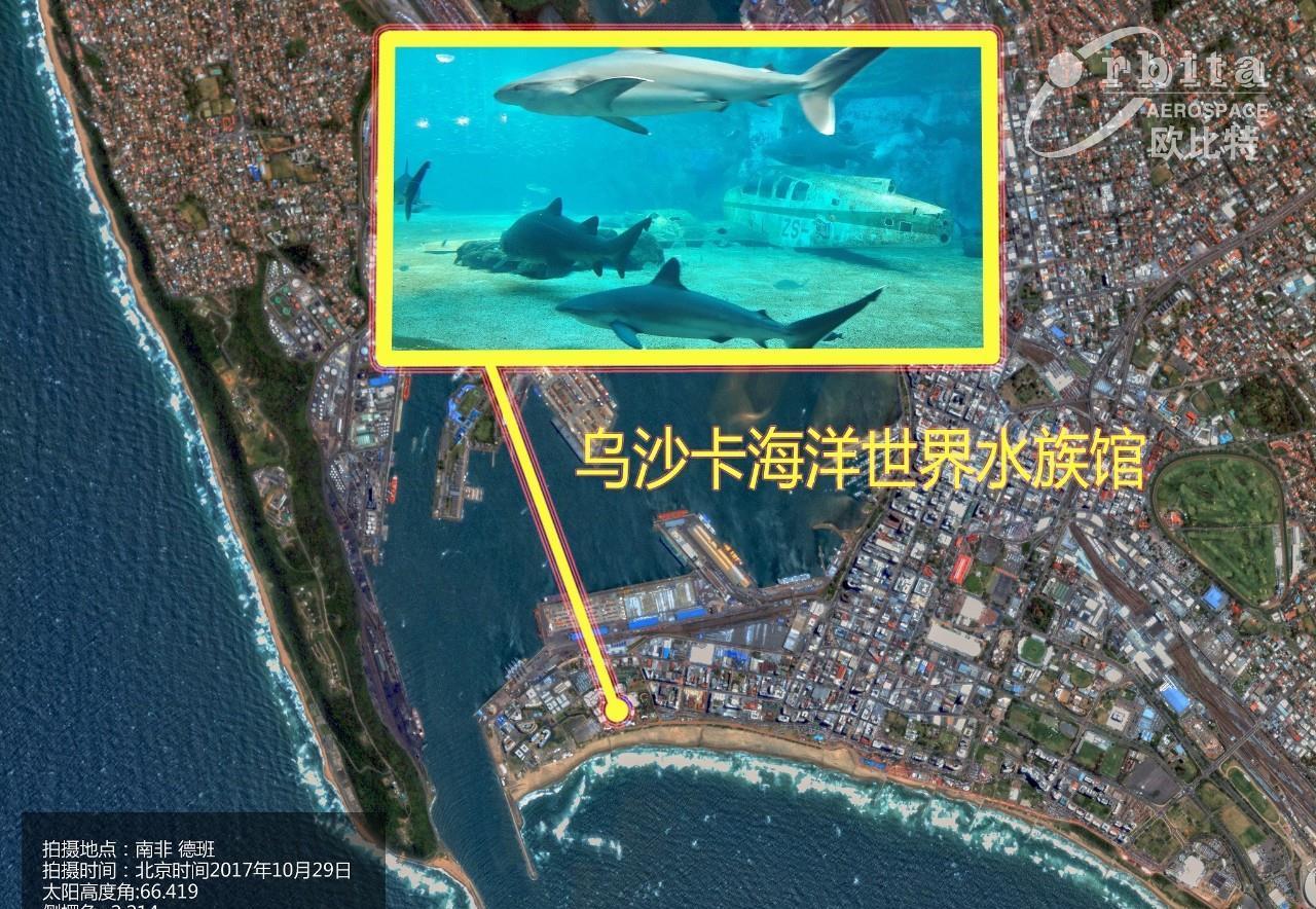 遥感日报——南非最大的海洋世界主题公园——乌沙卡海洋世界水族馆