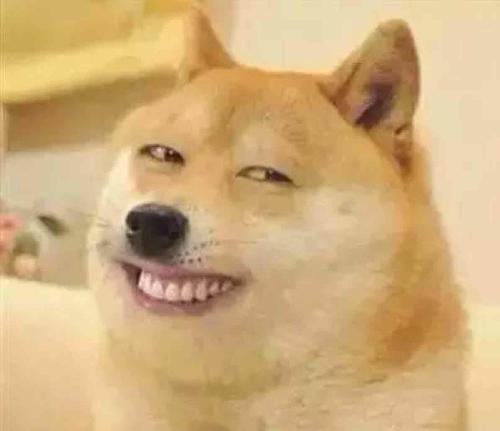 动物大笑的图片