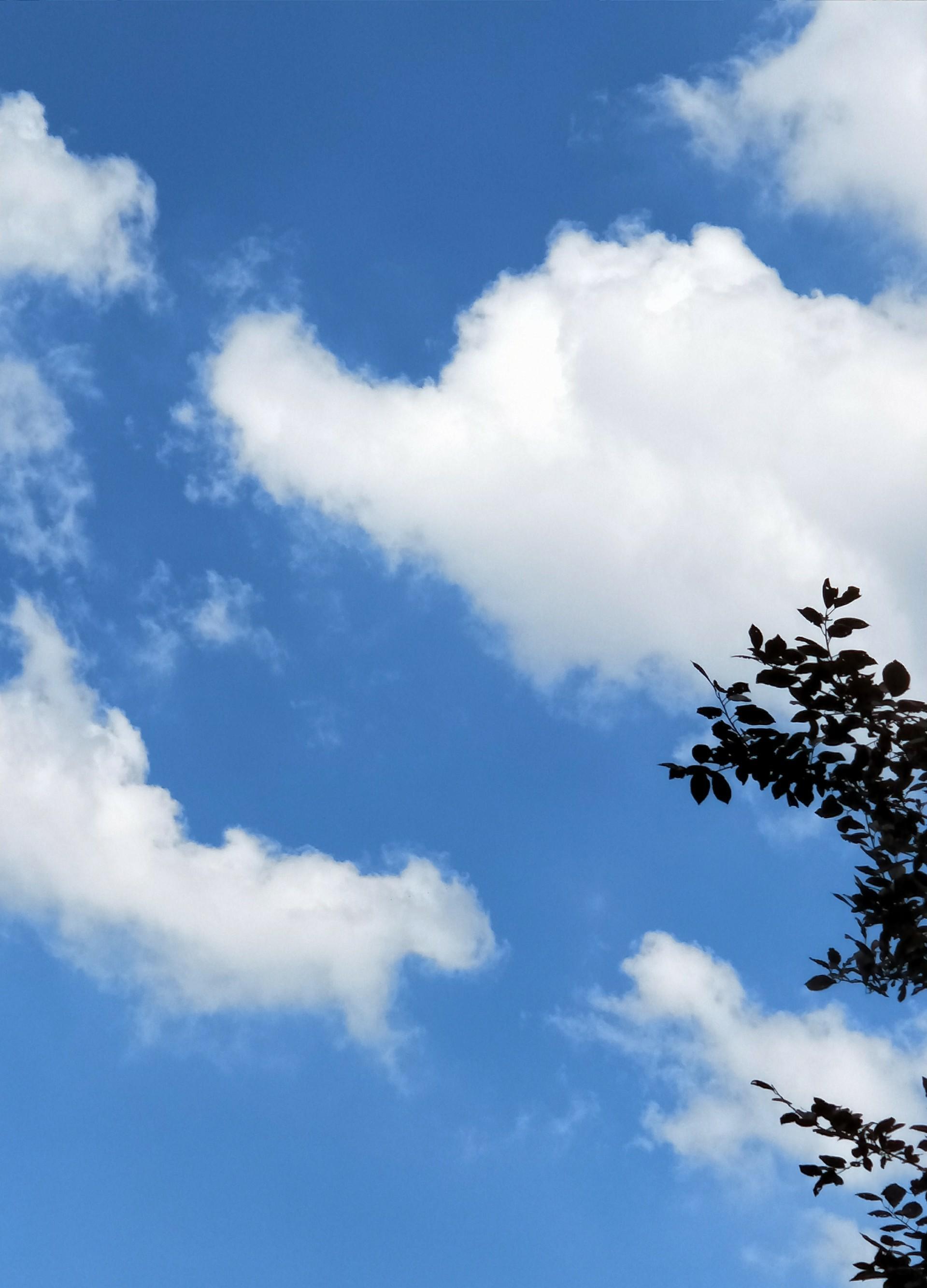 背景 壁纸 风景 天空 桌面 1919_2743 竖版 竖屏 手机